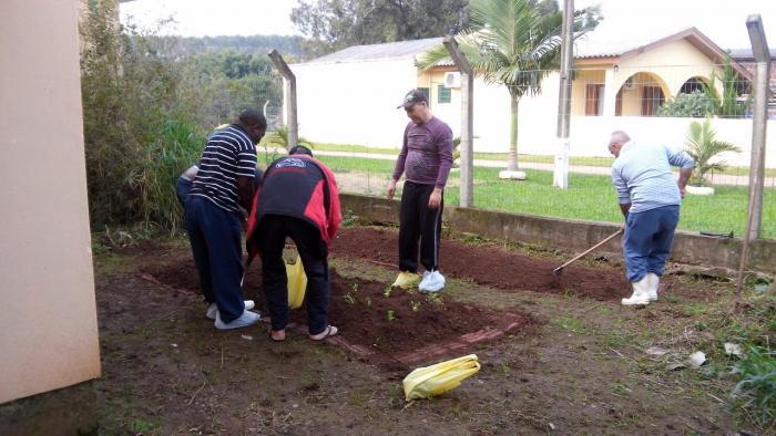 Pacientes do Caps organizam horta