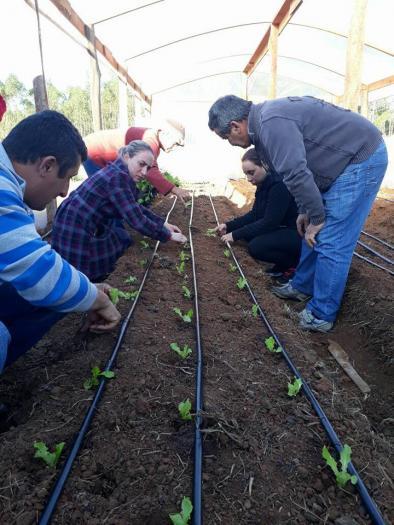 Comunidade de Júlio de Castilhos recebe curso de irrigação