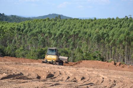 Terreno para construção de aviário em Amoras está recebendo terraplanagem