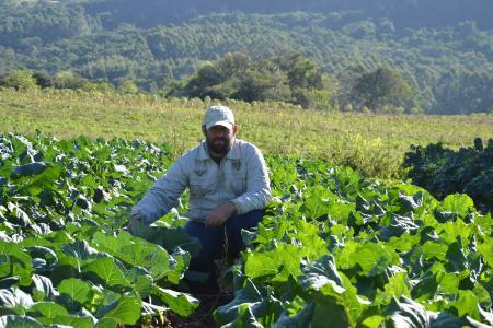 Produtor rural investe em agricultura orgânica