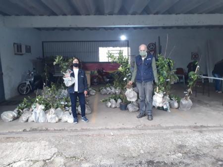 Emater entrega mudas da campanha Pomar Doméstico