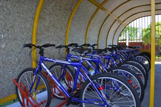 Logotipo do projeto: Bicicletário Municipal